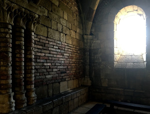 tanyaahmedthecloisters